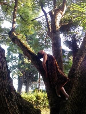 Мартышка на дереве